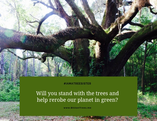 I am a tree sister, supporting planting of trees